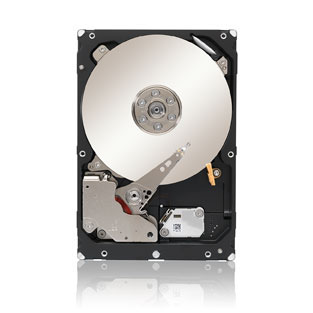 Seagate Constellation ST1000NM0033 1TB 7.2K SATA 6Gb/s 3.5